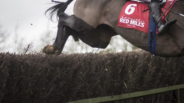 RED MILLS Amateur Grand National Produces Rousing Finish